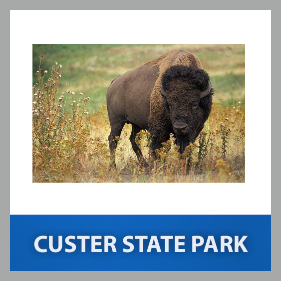 custer-state-park